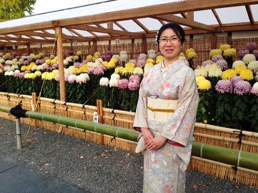「菊の美しさ、そして、小色紙」 まつもとsゆうこさん投稿;01