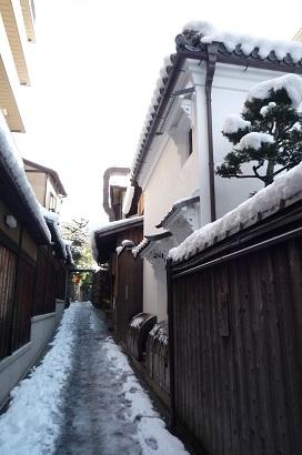 「雪化粧」 和心さん投稿;01
