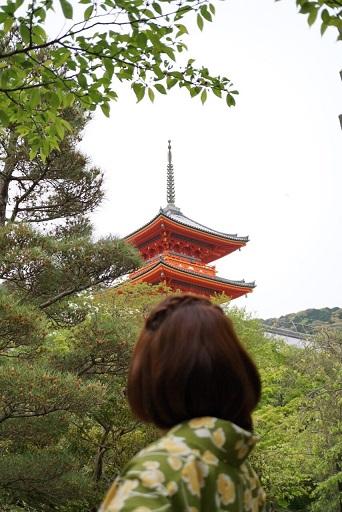 『新緑の季節』natsumiさん投稿;02