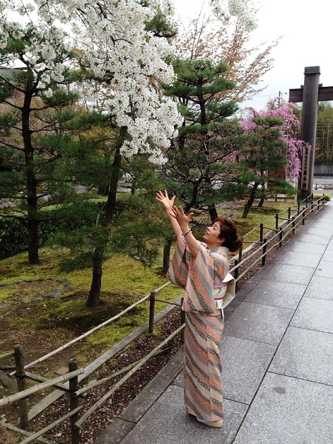 『花見』月のうさぎさん投稿;02