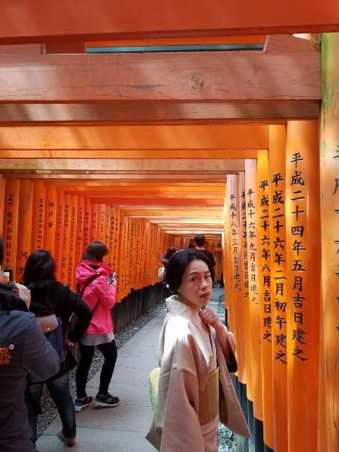 『伏見稲荷にて』sakuraboruzoiさん投稿;01